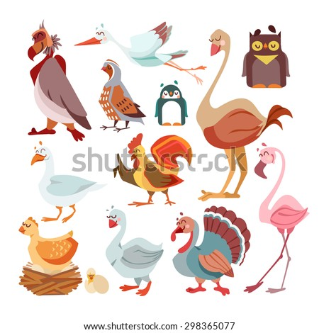 Big set of cute cartoon birds from around the world. Animals icons set.Stork,rooster,partridge,turkey,flamingo,goose,ostrich,owl,seagull,penguin. Vector illustration isolated on white background - stock vector