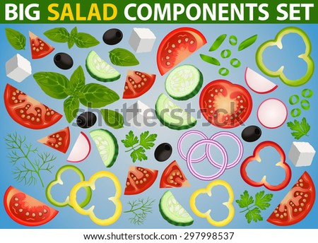 Big set of isolated salad ingredients: tomato, cucumber, paprika, onion, olives, feta, basil, radish, dill and parsley. Vector can be used for restaurant and cafe menu design, food posters and other. - stock vector