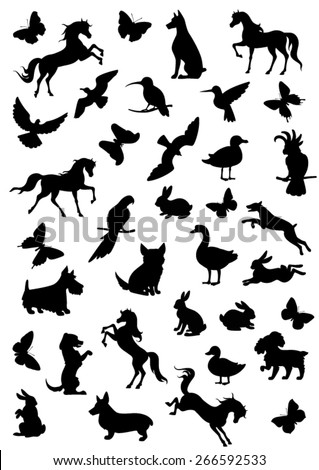 Big set of vector silhouettes, outlines and drawings of animals - stock vector