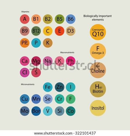 Biologically important elements: vitamins,micronutrients, macronutrients and other active substances. - stock vector