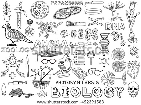 Biology Science Doodle Handwriting isolated Elements. Science and School Education theme. - stock vector