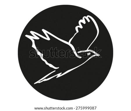 Bird - stock vector