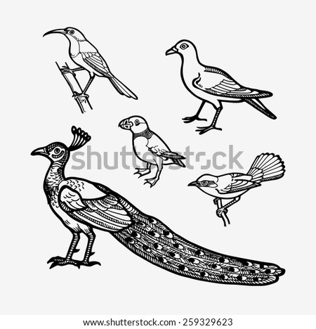 Bird sketch vector set 4. Good use for sticker design, symbol, icon, illustration, or any design you want. Easy to use, edit, or change color. Each object is a group. - stock vector
