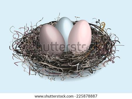 Birds nest  - stock vector