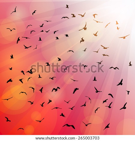 Birds, seagulls silhouette in the rays on pink background, sunset, dawn. Vector - stock vector