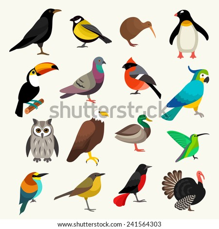 Birds set - stock vector