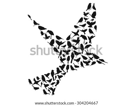 birds silhouettes group vector - stock vector