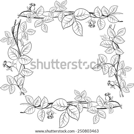 Black and white frame with flowers. EPS10 vector illustration. - stock vector