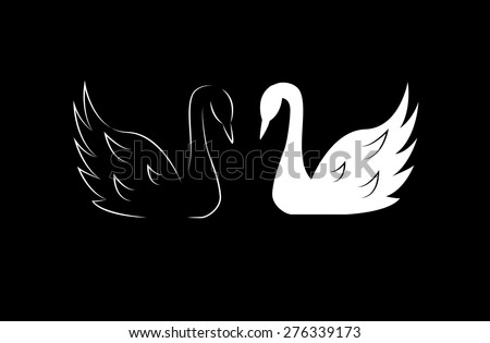 Black  and white swans - stock vector