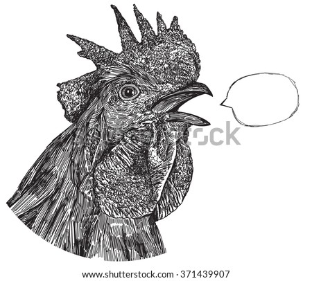Black Cock Picture, The head of the cock, Rooster cries - stock vector
