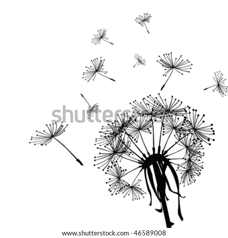 Black dandelion in the wind - stock vector