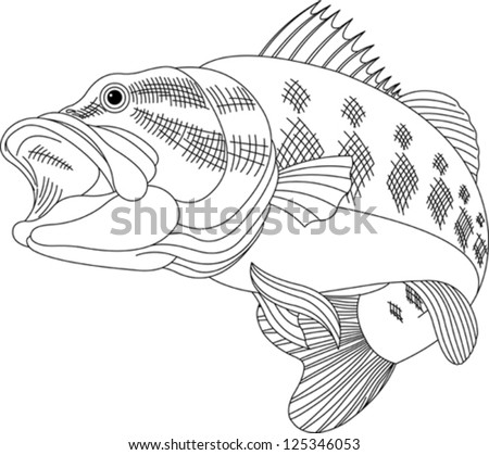 Black line illustration for a leaping Bass - stock vector