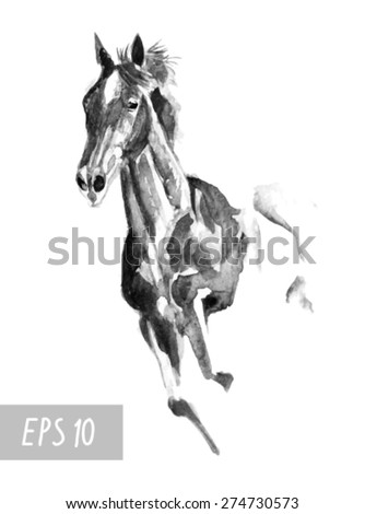 black monochrome horse watercolor in vector format. EPS 10 - stock vector