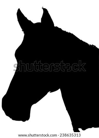 black silhouette of horse - stock vector