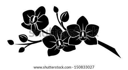 Black silhouette of orchid flowers. Vector illustration. - stock vector