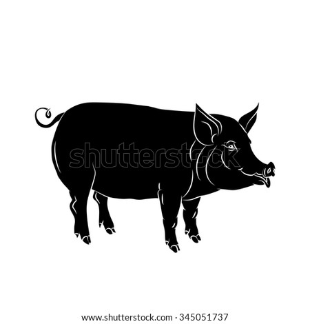 Black  silhouette of pig is on white background. Vector illustration. - stock vector