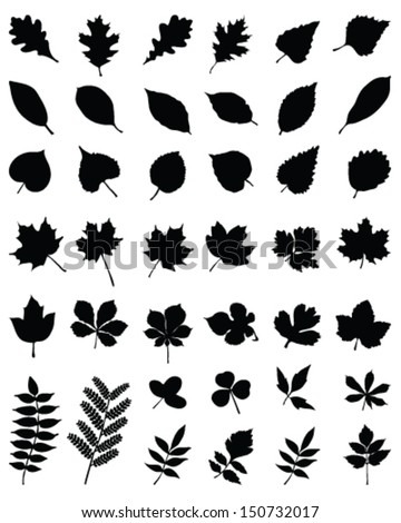 Black silhouettes of foliage-vector - stock vector