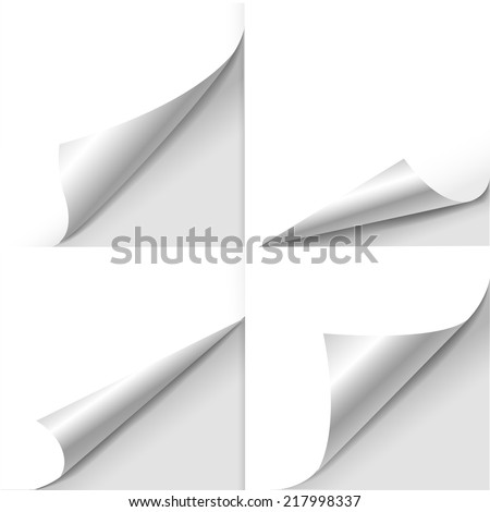 blank sheet of paper with page curl set over white - stock vector
