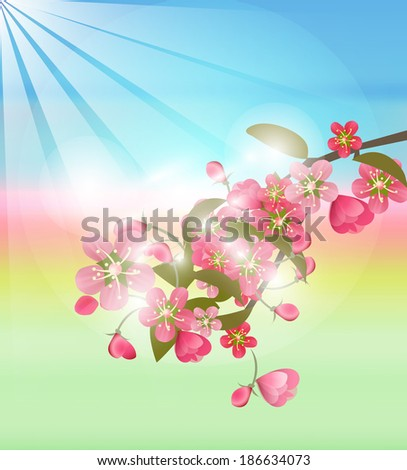 blossoming apple-tree3 - stock vector