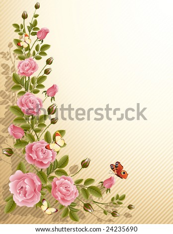 blossoming roses - stock vector