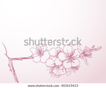 blossoming tree line art hand drawing. spring stylish horizontal background with pink plum flowers outline vector - stock vector