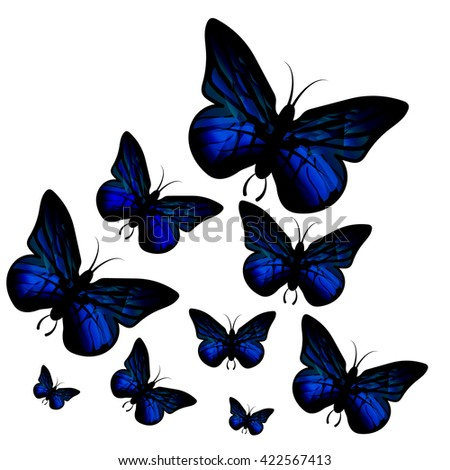 Blue butterfly isolated on white background. Papilio Ulysses. Vector. - stock vector