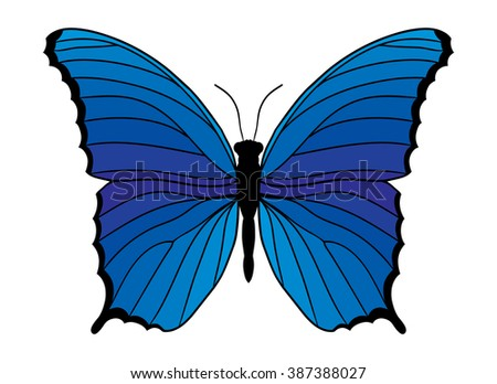 Blue butterfly isolated on white background. Vector illustration. - stock vector
