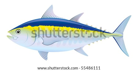"Blue fin Tuna (Thunnus thynnus) saltwater fish. ""Full compatible. Created with gradients."" - stock vector"