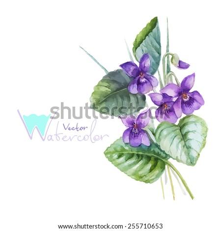 Blue pansy viola flowers bouquet, vector watercolor illustration - stock vector