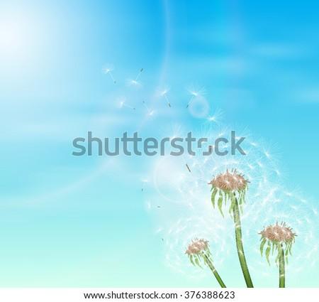 Blue sky and three dandelion. Vector illustration. - stock vector