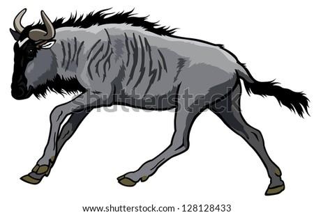 Wildebeest Stock Vectors & Vector Clip Art | Shutterstock