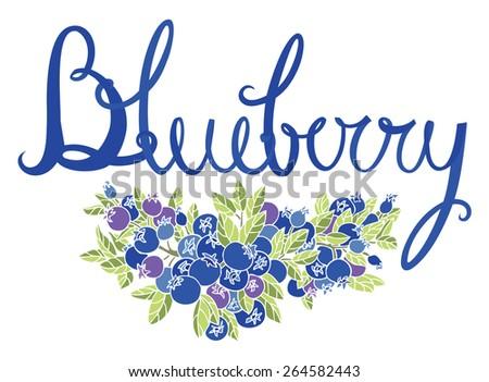 Blueberry calligraphy card - stock vector