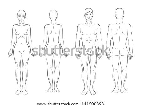 Body - stock vector
