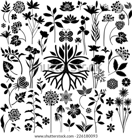 Botany garden - stock vector