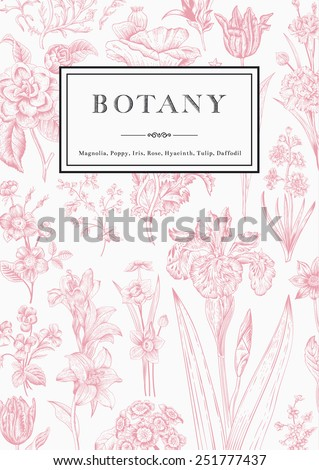 Botany. Vintage floral card. Vector illustration of style engravings. Pink flowers with black and white frame. - stock vector