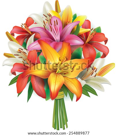 Bouquet of lilies - stock vector