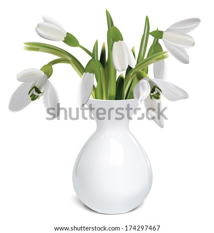 Bouquet of snowdrops in a vase. Vector illustration - stock vector