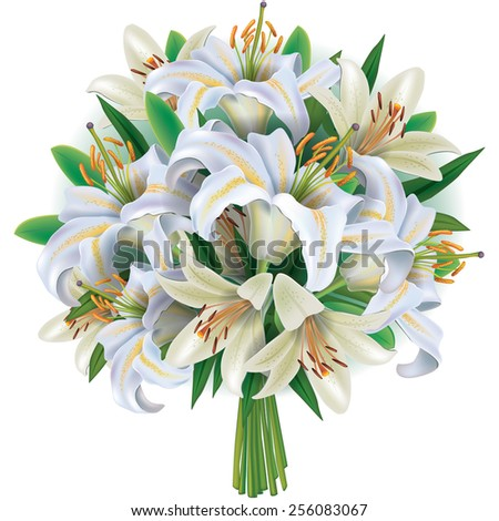 Bouquet of white  lilies  - stock vector