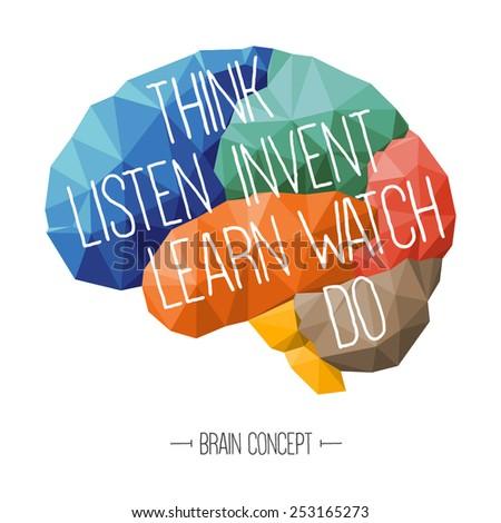 Brain concept, education concept - stock vector