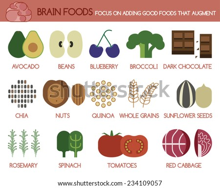 Brain foods focus on adding good foods that augment - stock vector