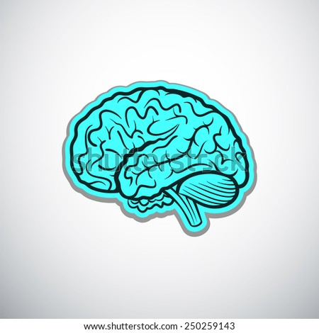 brains outline blue colored vector illustration - stock vector