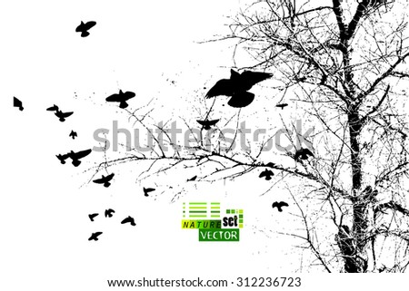 branch of a tree with flying birds. Vector - stock vector
