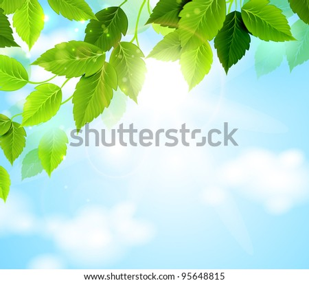 branch with green leaves hanging from the tree - stock vector