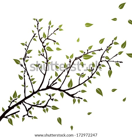 Branch with leaves - vector - stock vector