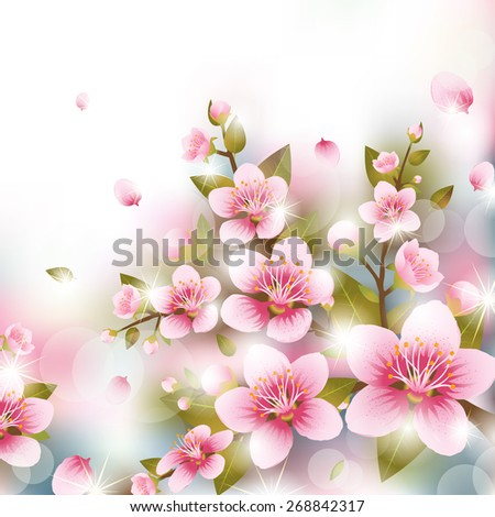 Branches of Cherry Blossoms in front of Blurred Background - stock vector