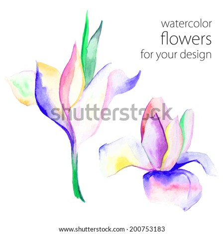 bright delicate watercolor painting flowers - stock vector