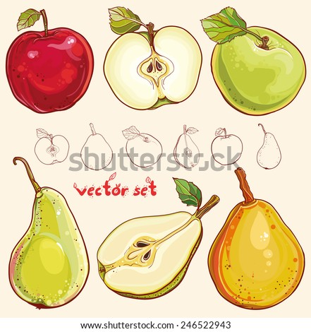 Bright vector illustration of fresh apples and pears. Single apple and pear, part of apple and pear, isolated, colored and outline drawing of fruits. Vector set with fresh apples and pears. eps 10 - stock vector