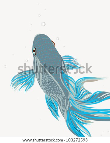 Koi tattoo stock photos images pictures shutterstock for Koi fish vector