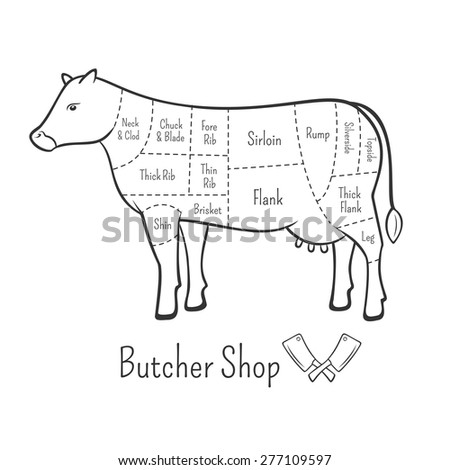 British cuts of beef diagram and butchery design element - stock vector