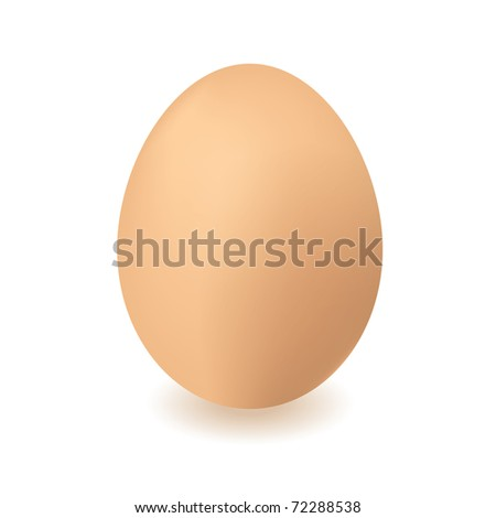 Brown chickens or hens egg with isolated white background and shadow - stock vector